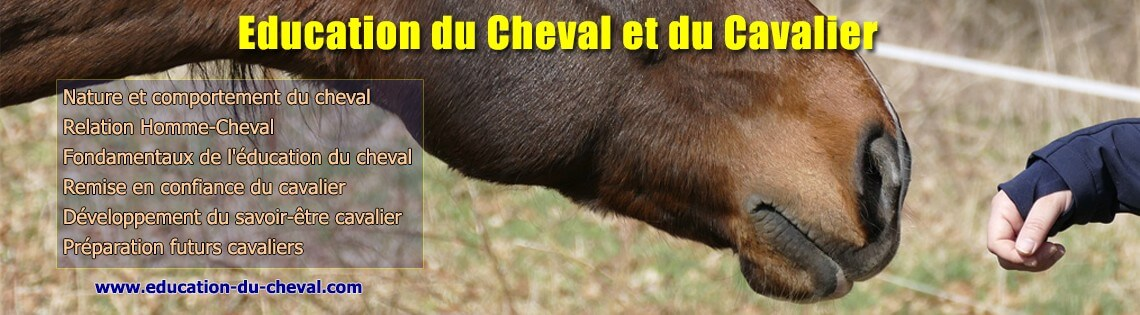 Education du cheval et du cavalier